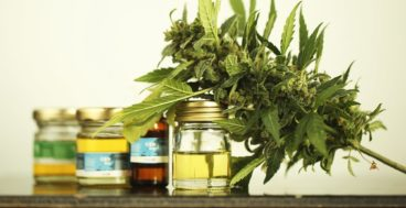 cbd products understanding your options