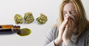 is there such a thing as cbd allergies