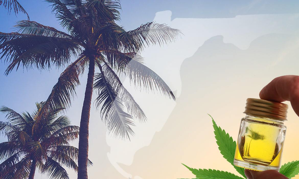 CBD Oil in Florida: Things to Know